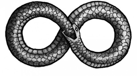 Coiled Snakes forming a Lemniscate